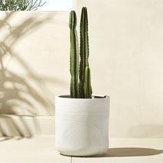 CB2 Zen Large White Planter $129