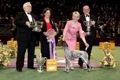 The Westminster Kennel Club | 2005 Best In Show