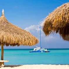 Aruba: Insider Tips - Photo: Courtesy Hyatt Regency Aruba