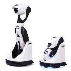 robot în mall)