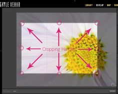 Learn how to Crop in Lightroom | Pretty Presets for Lightroom