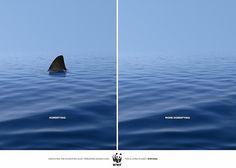Fondo Mundial para la Naturaleza: Aterrador v/s Más Aterrador WWF