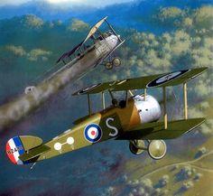 1917 09 Sopwith Camel 45 Squadron Lt D GMcLean