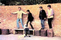John Lennon, Paul McCartney, Richard Starkey, and George Harrison with Paul's English sheepdog, Martha Beatles Funny, Beatles Love, Les Beatles, John Lennon Beatles, Hello Beatles, Beatles Guitar, Ringo Starr, George Harrison, Paul Mccartney