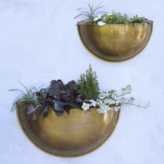 Sola Brass Wall Planters