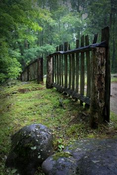 Old rustic fence in the woods