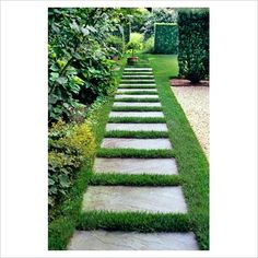 for the side yard : modern garden cement squares walkway