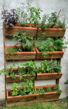 Projects, Home Decor, Ideas, Vegetable Gardening, Gardening, Garden, Indoor Gardening, Vertical Vegetable Gardens, Furniture Plans