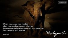 Role Model - Motivational Quotes - Inspirational Quotes - Fitness Advice - Bodynv.tv #116