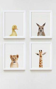 The Animal Print Shop | Little Gatherer