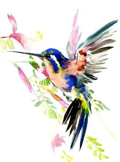 Hummingbird and Flowers Watercolor Art Painting. Tattoo Art Design.  Colibri.  Acuarela.  Watercolour.