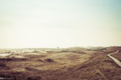 Amrum Impression 14 - Sugar Ray Banister