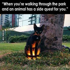 Side Quest