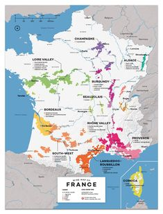 Food infographic French Wine Exploration Map Infographic Description France Wine Map by Wine Folly More - Infographic Source Map France, France Area, Tours France, Guide Vin, Wine Guide, Art Du Vin, French Wine Regions, La Trattoria, History Of Wine