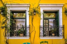 Colors of The Plaka: Yellow Athens, Greece