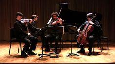 Brahms Piano Quartet in c minor op. 60, I. Allegro ma non troppo - Colbu...