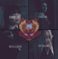ravenclaws. confused. Foolish. Intelligent. Different.