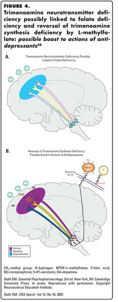 CNS Spectrums: Novel Therapeutics for Depression: L-methylfolate as a Trimonoamine Modulator and Antidepressant-Augmenting Agent