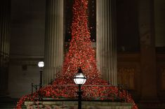 Weeping Window poppies at St Georges Hall. Flickr image by Russ Oakes