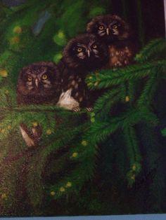 Búhos entre pinos. Acrílico sobre lienzo, 30 x 40, 2013, by Melva López