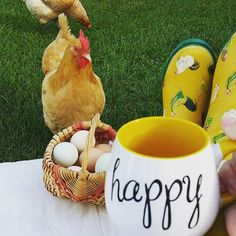 We think this hen wants to make a trade for @happydaysfarm's #Pier1 Happy Mug. #happy #sunday