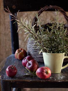 Apples & rosemary