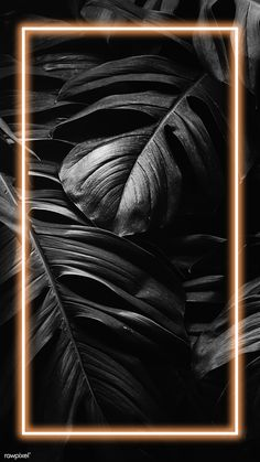 4k Wallpaper Iphone, Handy Wallpaper, Framed Wallpaper, Phone Screen Wallpaper, Neon Wallpaper, Graphic Wallpaper, Iphone Background Wallpaper, Mobile Wallpaper, Fond Design