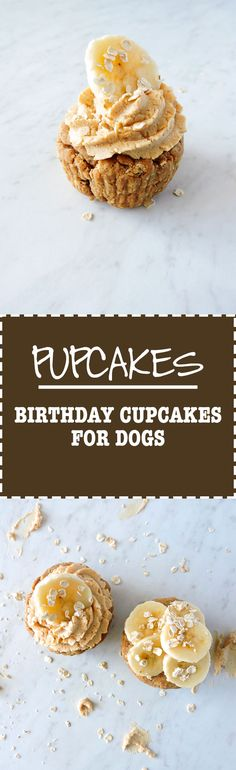 Homemade Dog cake Recipe: Pupcakes- Birthday Cake for Dogs Fresh Fit Kitchen Homemade Dog Treats, Healthy Dog Treats, Homemade Cakes, Yummy Treats, Pet Treats, Dog Cake Recipes, Dog Treat Recipes, Dog Food Recipes, Kids Birthday Treats