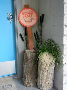 door entrance for bayou swamp party