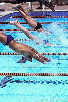 Swimmers jumping in the olympic pool