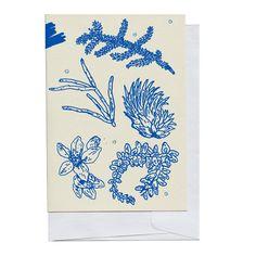 Tarjeta de pedazos de planta azul