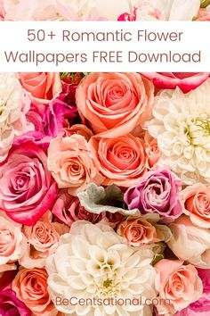 50+ Free Romantic Flower Wallpapers Download for iPhone
