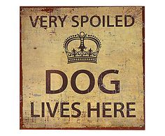 Placa Decorativa Very Spoiled Dog Lives Here - 25x25cm
