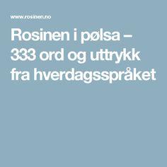 Rosinen i pølsa – 333 ord og uttrykk fra hverdagsspråket