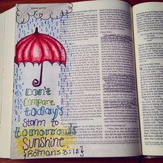 Savannah Tollison @that_ginger_lady Instagram photos | Websta