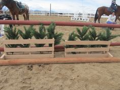 diy horse jumps made out of crates - Google Search