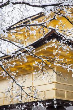 Kyoto, Japan   You Iwata