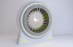 Green Wheel hydroponic garden produces groceries inside your home | Designbuzz