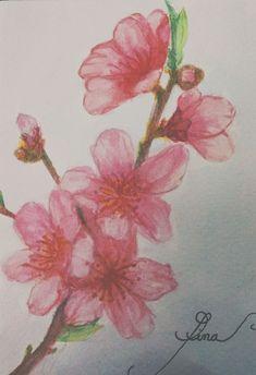 Peach blossom - By Gina.R.N