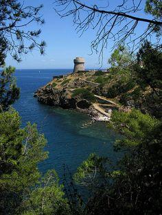 Capraia Island, Livorno, Tuscany, Italy