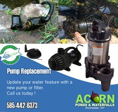 When you need to update or upgrade the plumbing and filtration systems in your pond, just call Acorn Ponds & Waterfalls. Our team of skilled and highly trained pond experts is always ready to answer your call seven days a week! Koi Fish Pond, Fish Ponds, Backyard Water Feature, Ponds Backyard, Pond Pumps And Filters, Water Feature Pumps, Pond Maintenance, Plumbing Installation