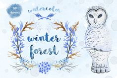 Watercolor winter set by kateja on @creativemarket