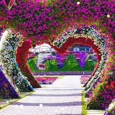 ✿⊱❥ Dubai Miracle Garden Dubai UAE Photography by @jhimgreg