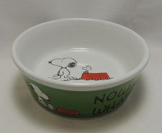 Best peanuts snoopy and the gang images
