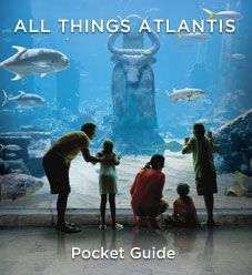 Atlantis Paradise Island Resort   Caribbean Bahamas Vacations