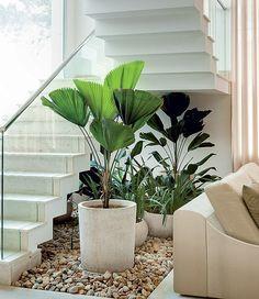 O que fazer com o espaço debaixo da escada? Um jardim, é claro! O paisagista Gil Fialho preencheu o recorte de 4 m² com licualas, pacovás e ...