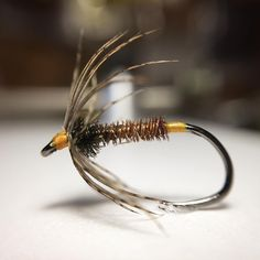 Pheasant spider size 12 #flytying #flyfishing #viseguyflyfishing #flytyingjunkie #hanak #hends #wetfly #flyfish