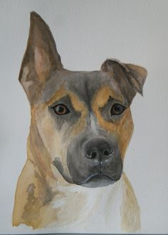 My dog in water colour!