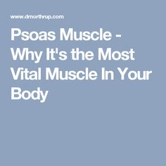 Psoas Muscle - Why It's the Most Vital Muscle In Your Body