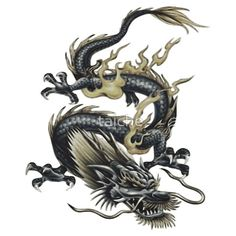 Lucky Chinese Dragon In Grey and Gold